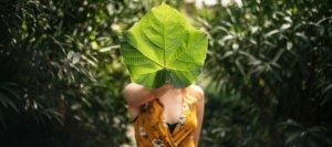 Green Culture 1263x560